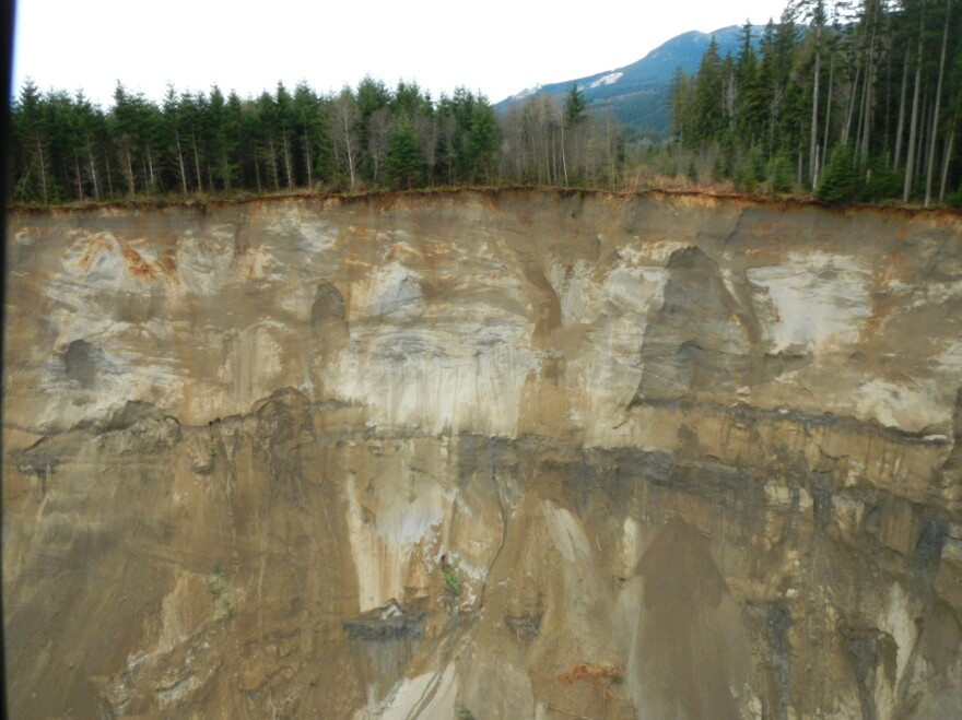 A view of the hillside that gave way and collapsed near State Route 530 is seen in this Washington State Department of Transportation handout picture taken near Oso, Washington on Sunday.