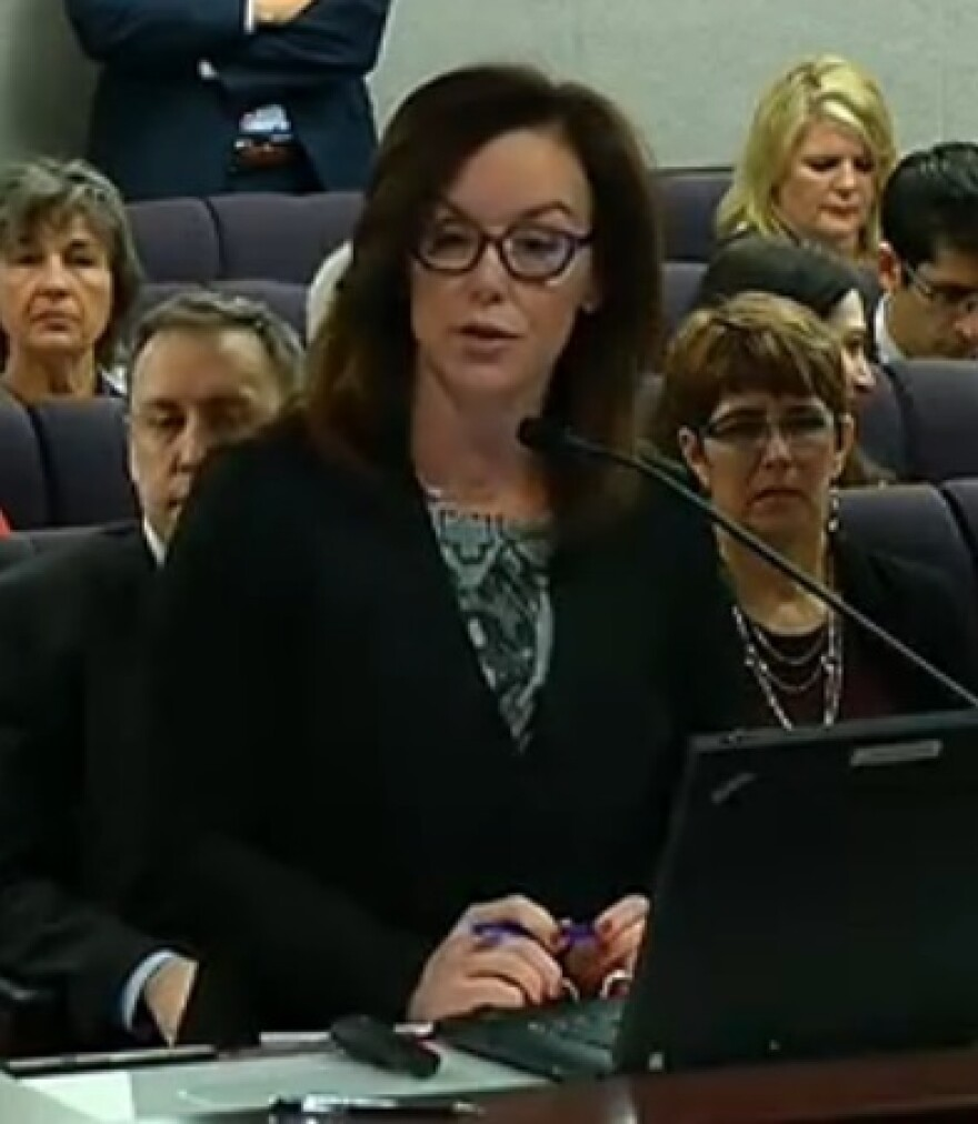 Sen. Lizbeth Benacquisto (R-Fort Myers) speaking to lawmakers about her bill Monday.