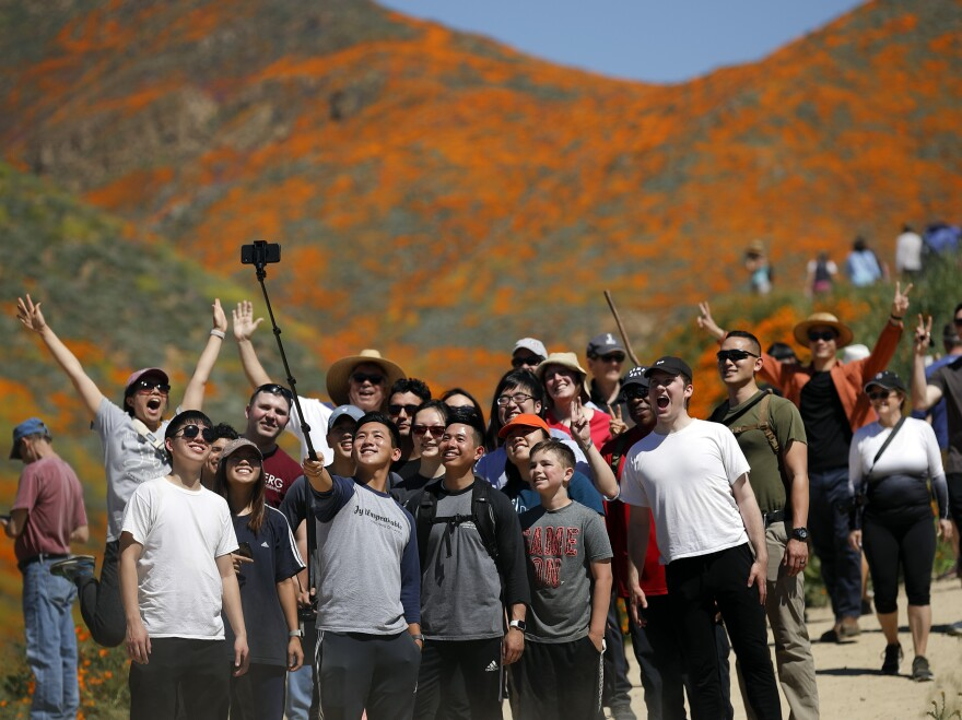 People pose for a picture among wildflowers in bloom Monday in Lake Elsinore, Calif.