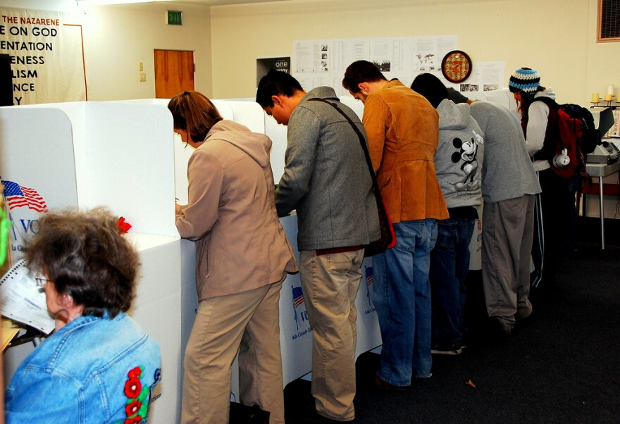 People lined up at voting booths.