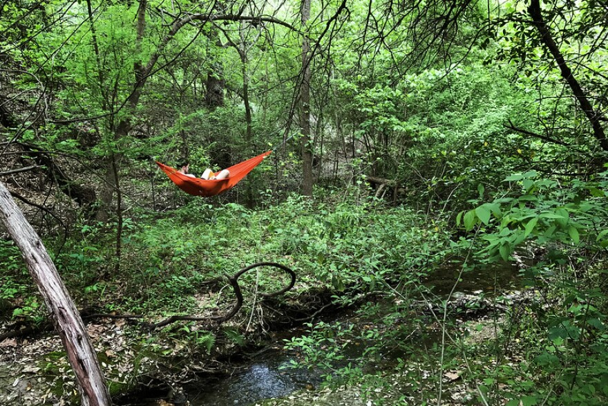 Getting out into nature and experiencing fresh air is one of the ways people can recharge after experiencing burnout. Central Texas neuropsychotherapist Junice Rockman says taking this and other steps can also help prevent burnout from setting in.