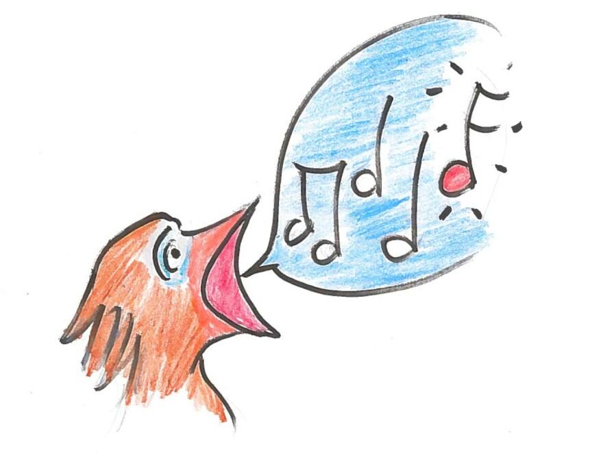 """Chick singing """"the note""""."""