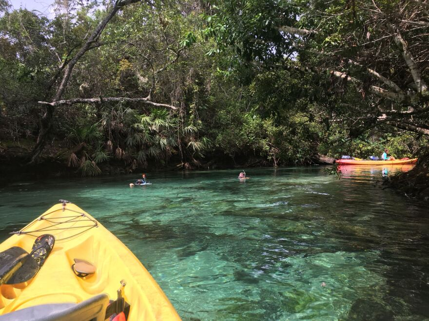 To the left, a yellow kayak on crystal clear blue water. To the right, a docked kayak with two snorkelers swimming in Weeki Wachee River.