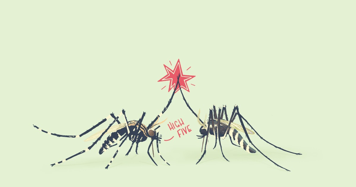 St. Louis Public Health Officials Aren't Prepared To Address Longer Mosquito Seasons