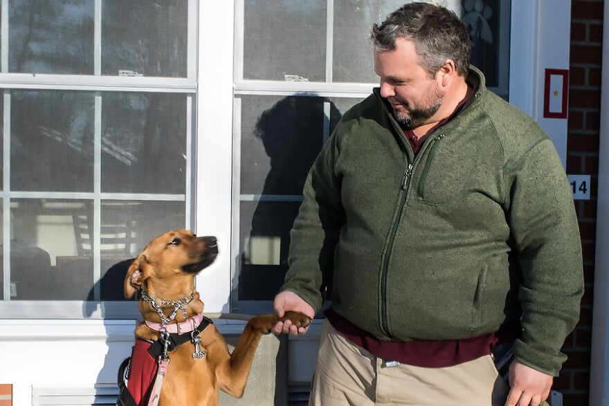 Army veteran Russel Keyser shakes hands with his dog, Artemis, outside of his Ronkonkoma, NY home. Keyser says the dog helps him deal with the effects of PTSD.