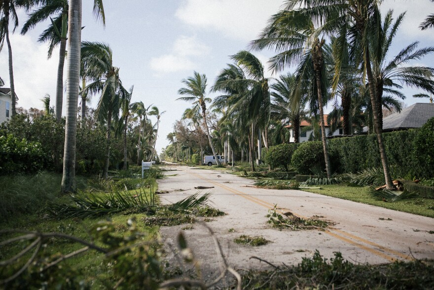 Debris lines a street near the beach in Naples, Fla. the day after Irma made landfall.