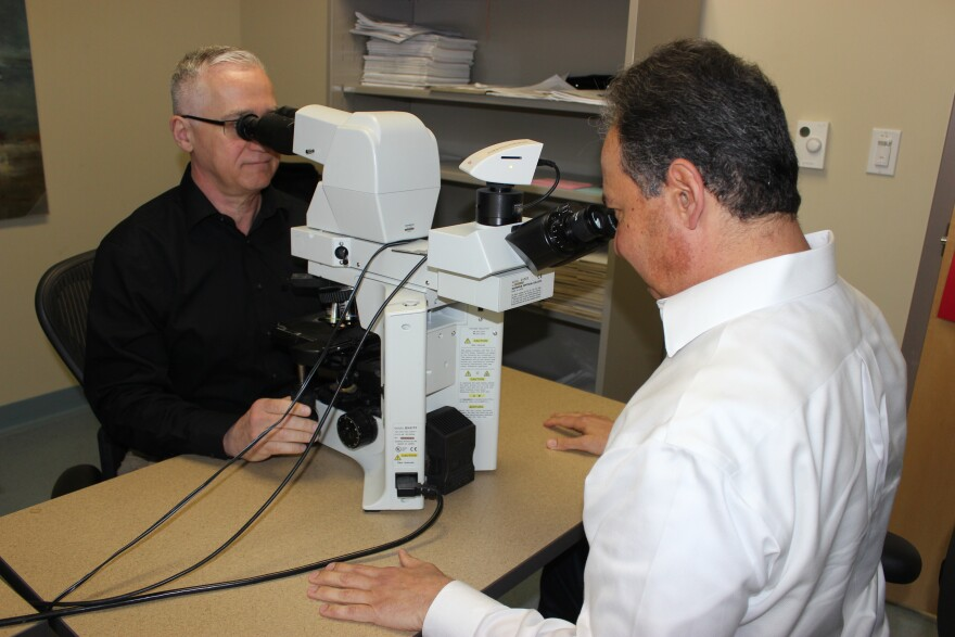 Drs. Stephen Mastorides and Andrew Borkowski analyze tissue samples under a microscope to spot diseases like cancer.