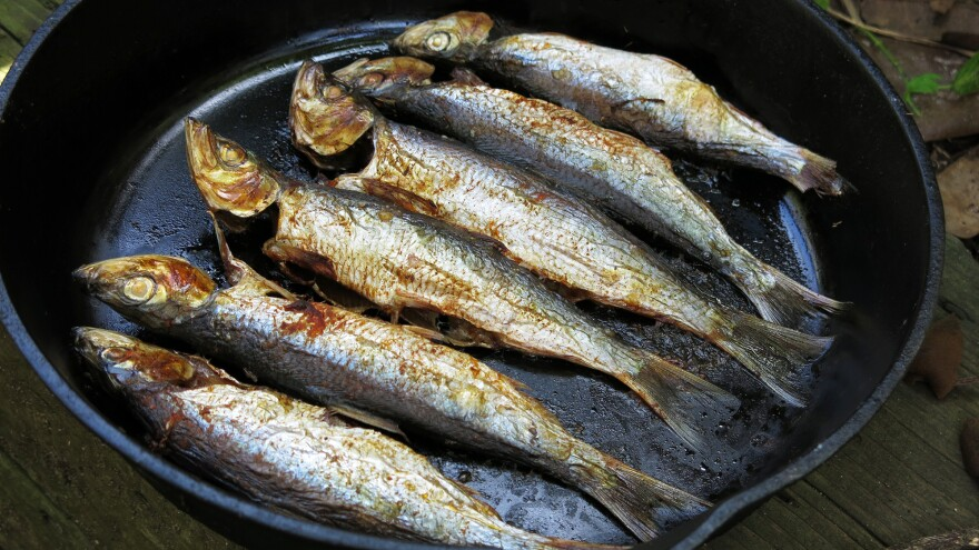 Herring are delicious, with flaky, mild meat and oil that sizzles on their skin when grilled over a flame. Chefs and ocean advocates have been promoting the environmental and health benefits of eating small fish like this. But the case of the San Francisco Bay's herring shows some of the obstacles to spreading that message.