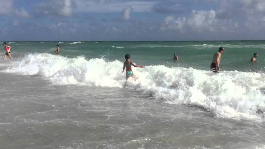 Miami Beach swimmers