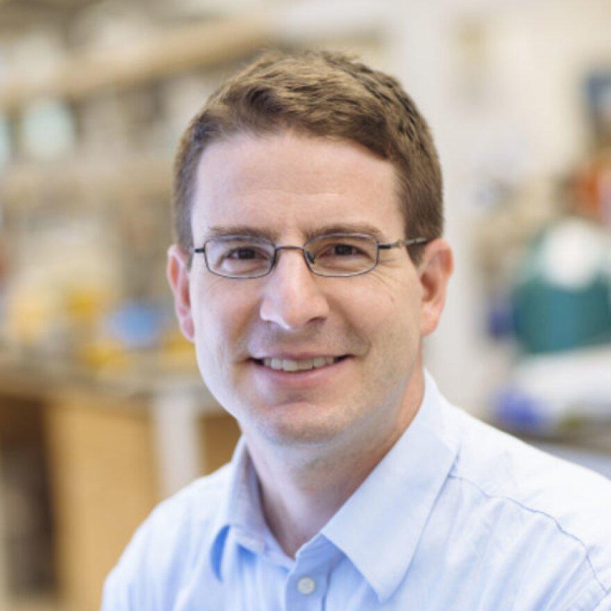 Daniel Giammar, professor of environmental engineering at Washington University.