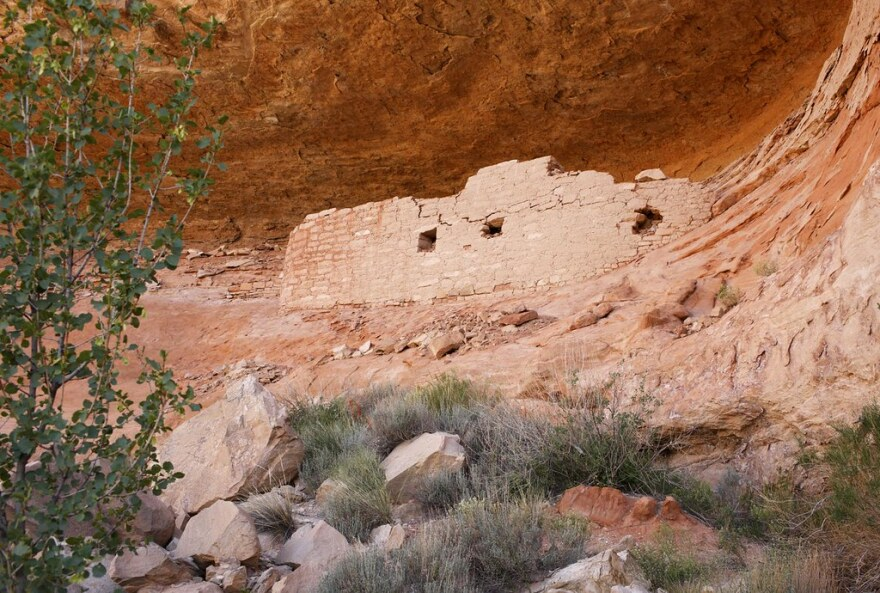 Photo of cliff dwelling.
