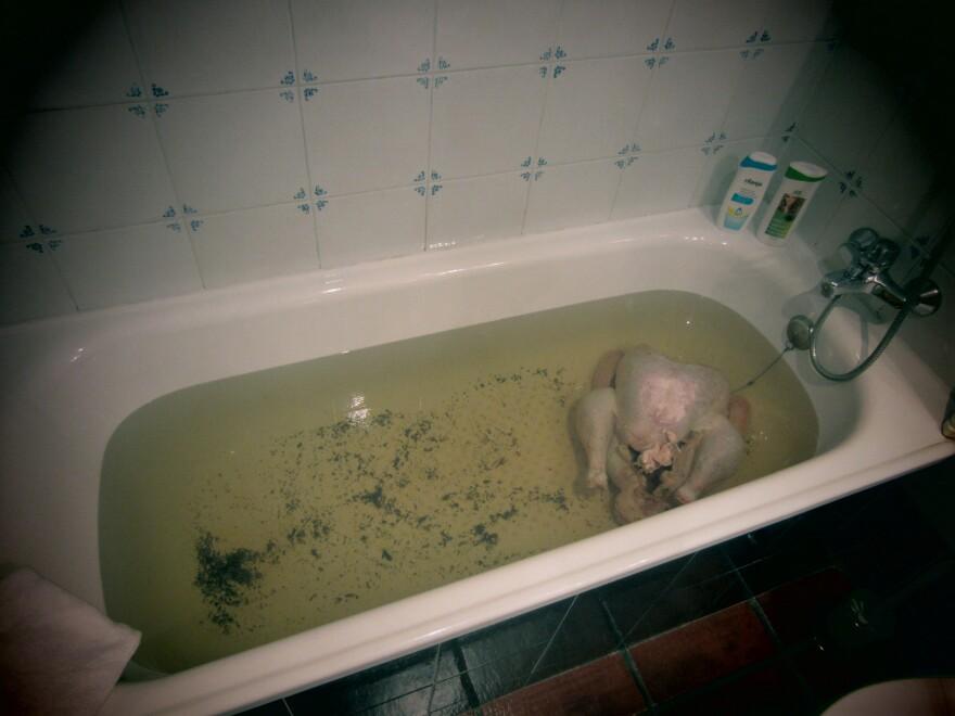 Turkey in the tub.
