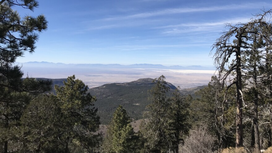 "The Sacramento Mountains are seen as an ""island in the sky,"" a refuge of forest land in the otherwise harsh southern New Mexico desert."