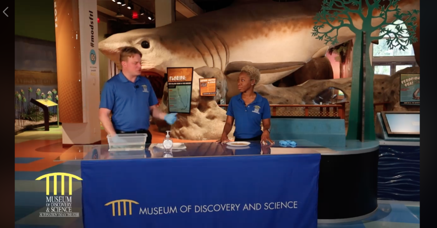 museum_of_discovery_and_science_video.png