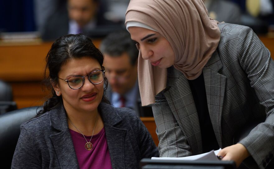 Michigan Rep. Rashida Tlaib (left), seen here during a March hearing on Capitol Hill, has a Democratic primary challenge.