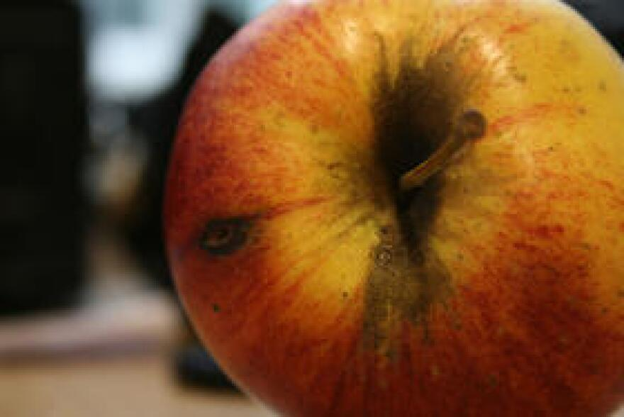 Charter school advocates think a first-of-its-kind database can help prevent bad apples from opening charter schools.