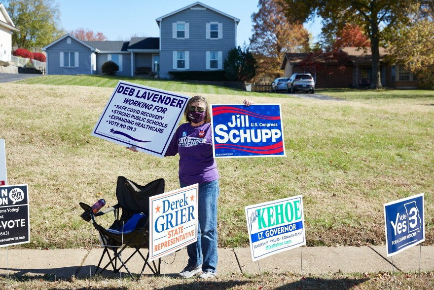 """""""I'm doing what I can for democracy,"""" said Ginger Johnson, polling for Democratic state Senate candidate Deb Lavender outside a polling site at the Ballwin Golf Course and Events Center on Election Day Tuesday, November 3, 2020."""