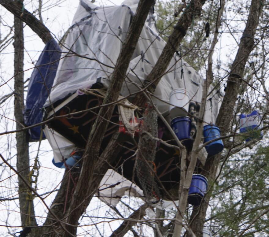 Treesit 1