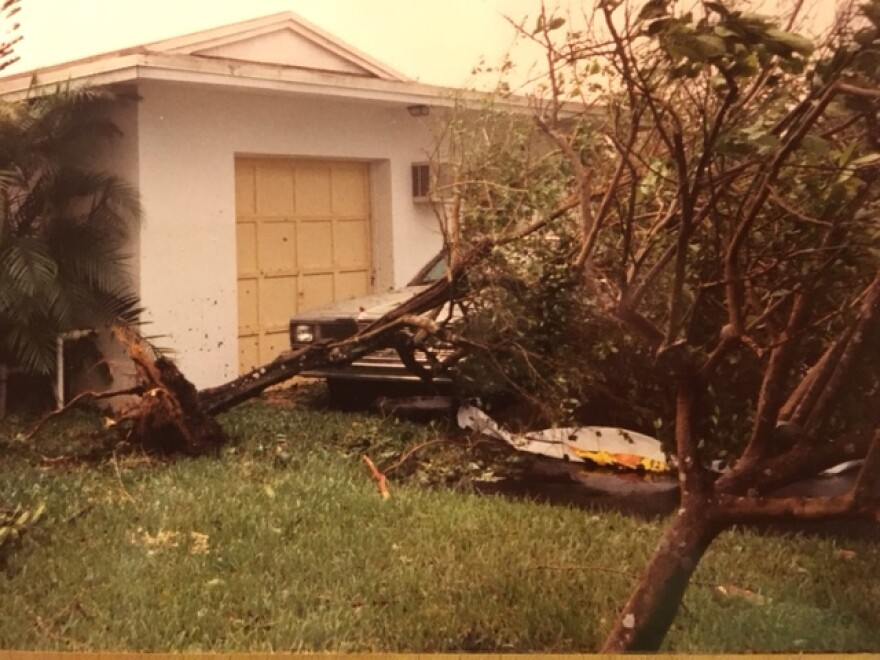 HurricaneAndrewFallenTrees_3.JPG