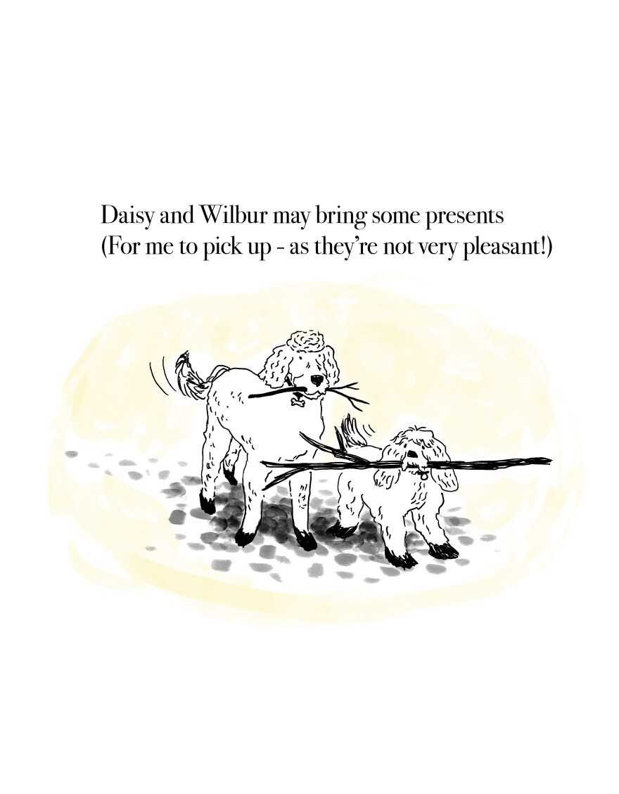 Daisy and Wilbur may bring some presents(For me to pick up - as they're not very pleasant!)