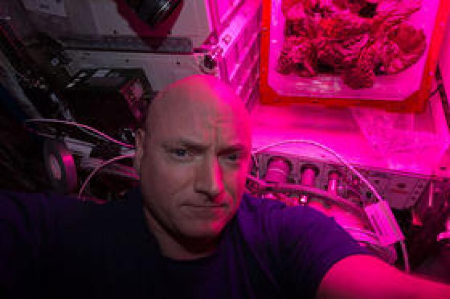 NASA astronaut Scott Kelly with a crop of red romaine lettuce in August of 2015.