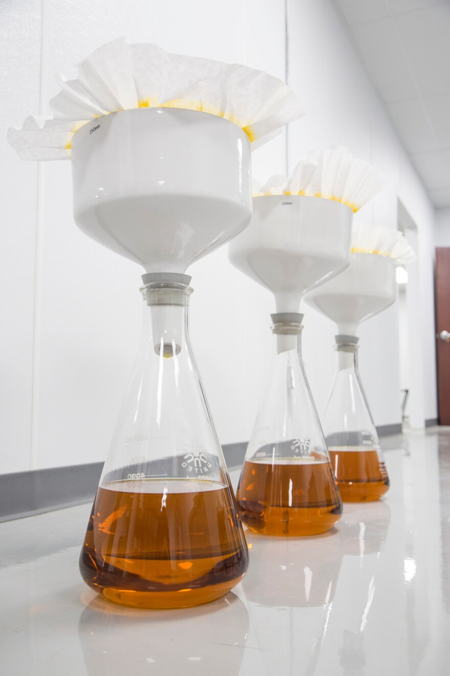 Photo of beakers filling with amber liquied.