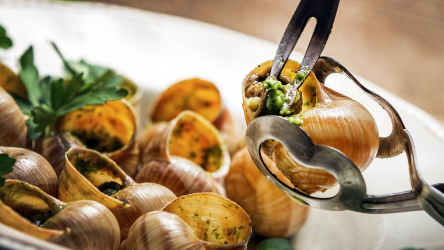 France's famed mollusk appetizer could be endangered by an unwelcome worm arrival, scientists worry.