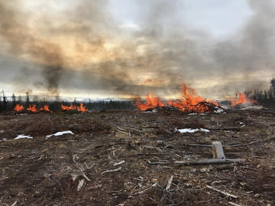 Photo of piles of debris burning in the distance amidst small piles of snow.