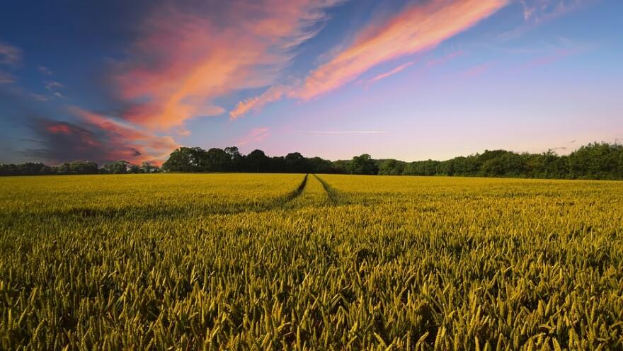 small_farm_sunset.jpg