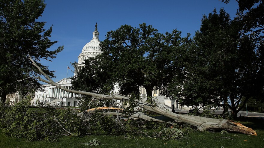 Branches and power lines littered the nation's capital after bruising storms swept through the Mid-Atlantic region on Friday night.