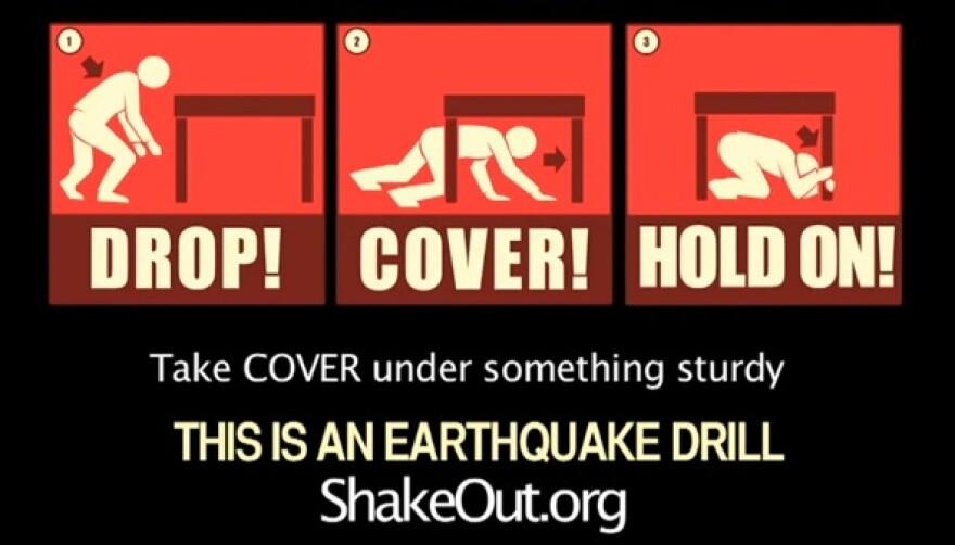 shakeout.jpg