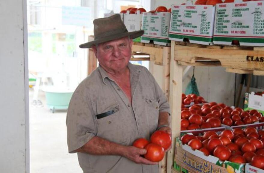 081314_tomato-Goeke.jpg