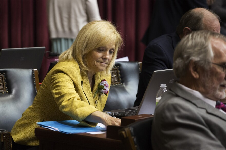 State Rep. Michele Kratky, D-St. Louis, works during the last few hours of the legislative session.