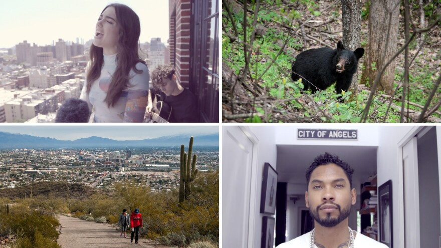 Listeners of our NPR One app rated these stories as the most liked, recommended and shared in 2016.