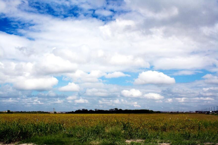 general_landscape_shot-prosper.jpg