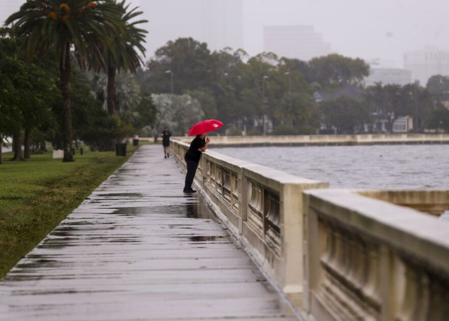 Man with umbrella looking out onto water off Bayshore Boulevard