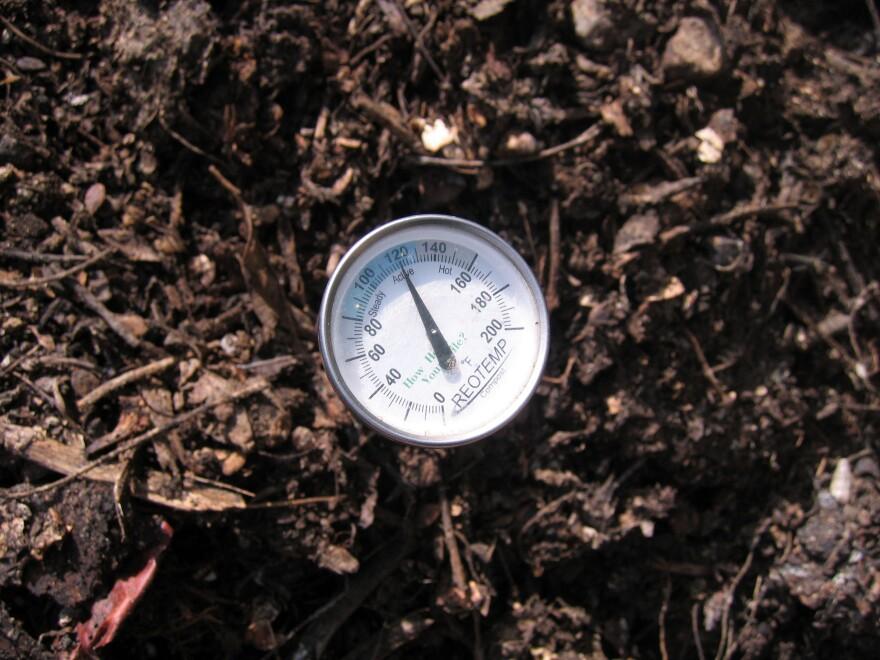 Austin compost_0.jpeg