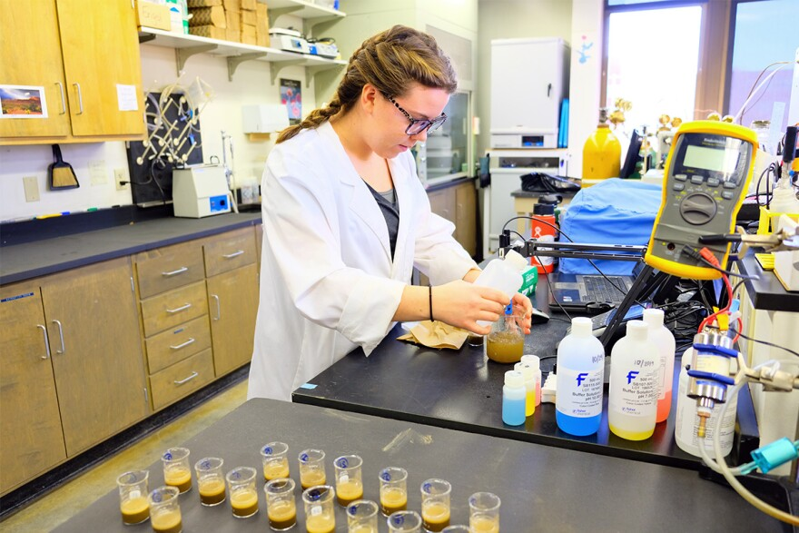 MSU student Meagan Key tests soil acidity in Richard Engel's lab in Bozeman November 5, 2019.
