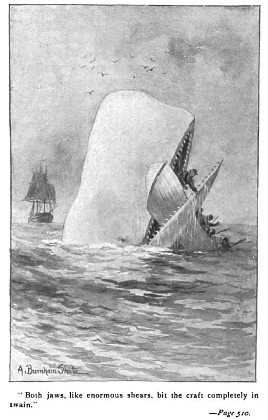 512px-Moby_Dick_p510_illustration.jpg
