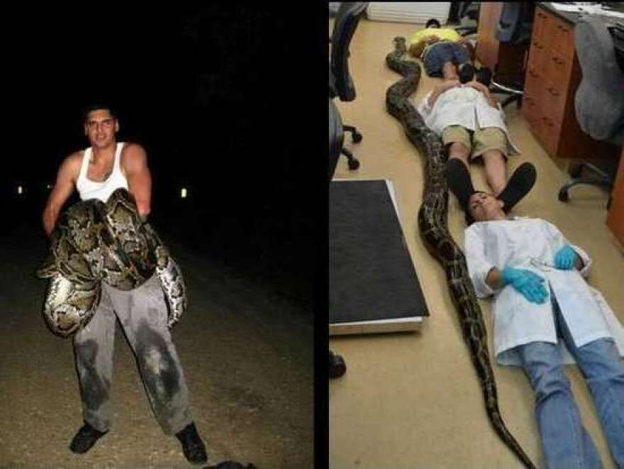 python picture.jpg