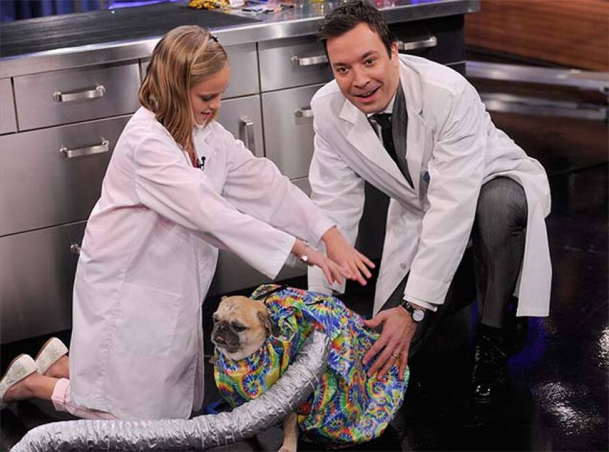 Clearwater inventor Melissa Streng and her dog Mojo show Jimmy Fallon her patented, award-winning Puff-N-Fluff dog drying system on a recent episode of NBC's Tonight Show.