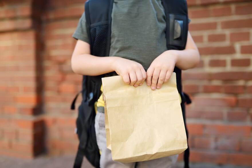 school_kid_bag_lunch.jpeg