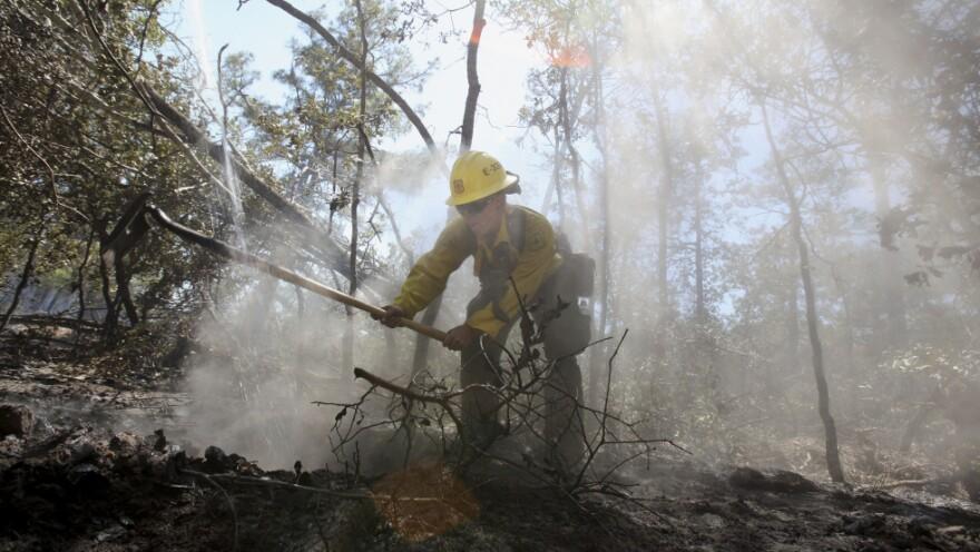 U.S. Forestry Service firefighter Samantha McKelvy worked Thursday to put out a hot spot near Bastrop, Texas.