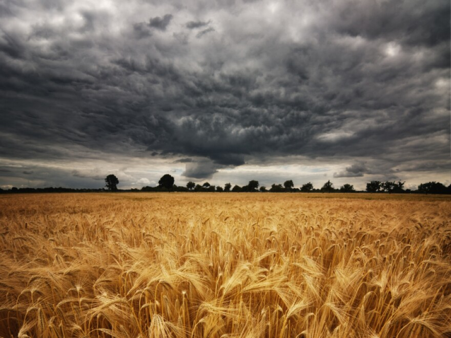 Altering the upper atmosphere could block enough sunlight to offset the warming effects of climate change and protect food crops. But what are the risks?