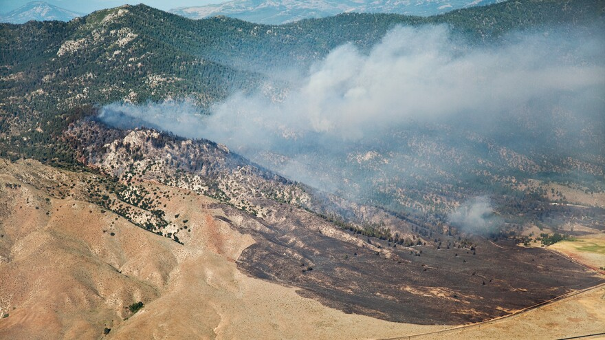 The Constantina Fire burning in Long Valley, Calif., in 2010, very likely started in cheatgrass.