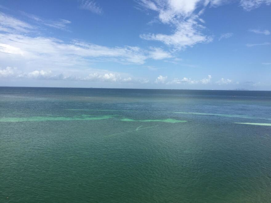 State wildlife officials have agreed Thursday to back tighter fishing limits at Biscayne National Park.