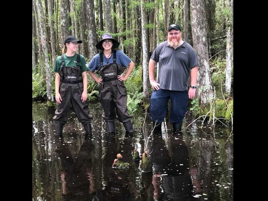 Forensic research faculty and students from USF deal with the elements recently at the Facility for Outdoor Research and Training in Pasco County.