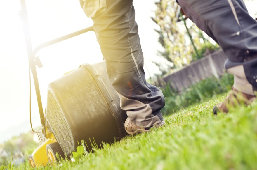 About a quarter of people between the ages of 20 and 69 have some hearing loss, typically from everyday noises like lawn mowers and music.