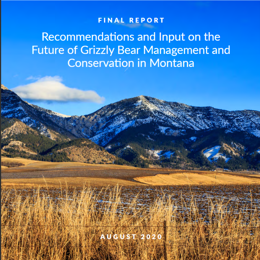 Grizzly Bear Advisory Council final report.