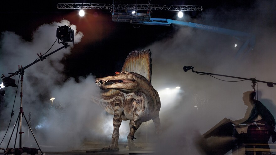 Who's your daddy? A model of the Cretaceous predator spinosaurus gets rock star treatment during a photo shoot for the October issue of <em>National Geographic</em>.